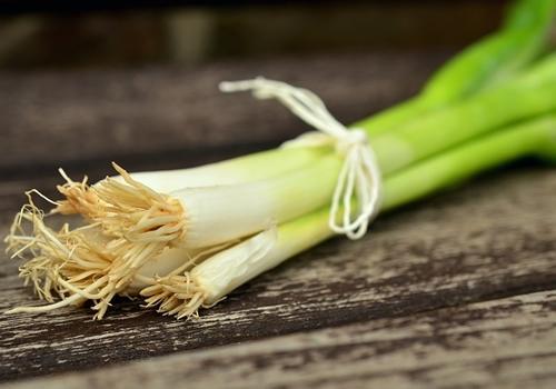 新鲜蔬菜防伪溯源系统